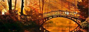 AutumnBanner2